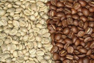 Lợi ích của việc chế biến cà phê nhân bằng phương pháp mật ong